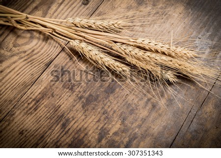 Sheaf of wheat on dark wooden background - stock photo