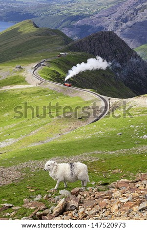 Sheep and mountain railway from the Llanberis Pass, Mount Snowdon, Snowdonia, Wales UK - stock photo