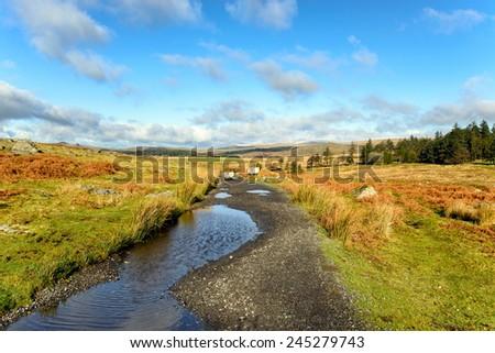Sheep crossing the track near Sheepstor on Dartmoor National Park in Devon - stock photo