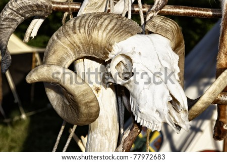 Sheep Skull in the medieval market - stock photo