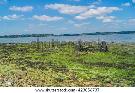 Shell Bay Shoreline Wheels - stock photo