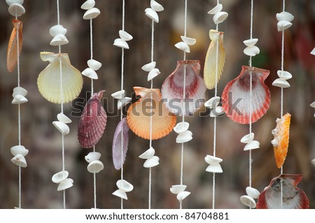 Shell curtain . - stock photo