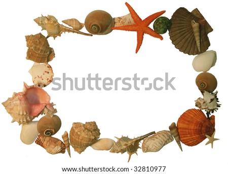 shell frame isolated on white background - stock photo