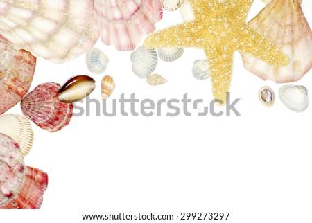 Shell frame on white background - stock photo