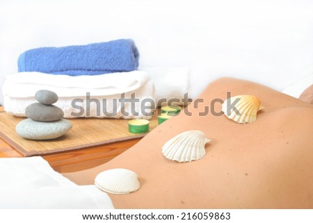 shell on back - stock photo