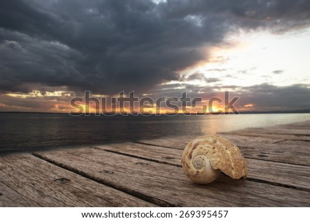 shell on the pier at sunset - stock photo