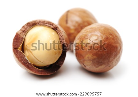 Shelled and unshelled macadamia nuts on white background  - stock photo