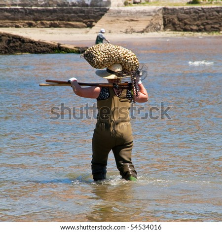 shellfish carrying a sack of clams - stock photo