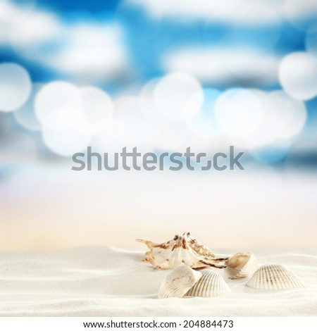 shells and sand  - stock photo