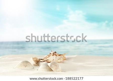 shells and sand and sky  - stock photo