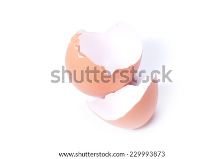 shells of brown eggs isolated on white background with shadow top view - stock photo