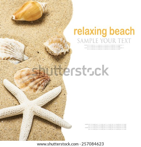 shells on the sea sand. The text is an example and can be easily removed - stock photo