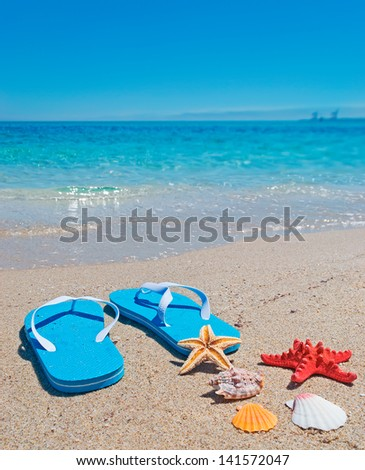 shells, starfish and flip-flops on the foreshore - stock photo