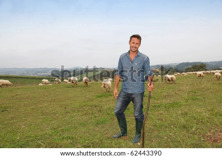 Shepherd standing in green field with sheep - stock photo