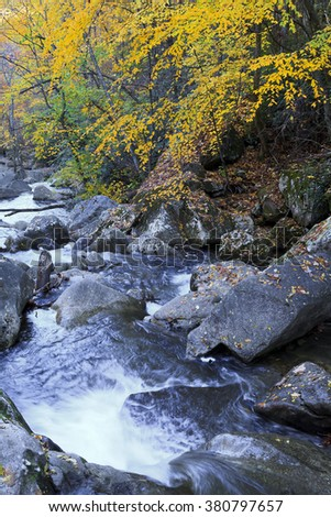 Shinny Creek at South Mountains State Park - stock photo