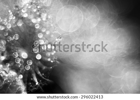 Shiny drops and bubbles - holiday and greeting card background  - stock photo