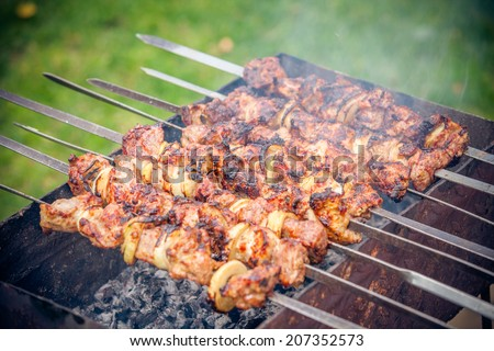 Shish kebab of the pork with the mix of spices  - stock photo