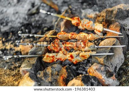 Shish kebab on skewers with smoke over charcoal - stock photo