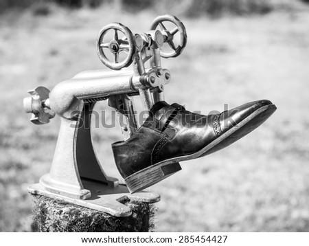 Shoemaker old stretcher - stock photo