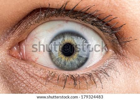 shoot of beautiful middle age woman fully opened eye macro - stock photo