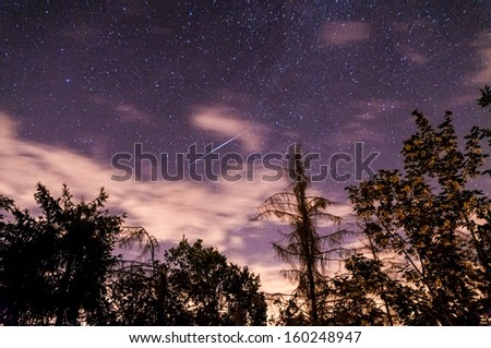 Shooting star on a violet summer night sky with trees - stock photo