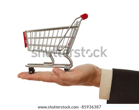 shopping cart on palm - stock photo