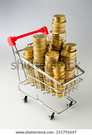 Shopping money. Shopping cart full of money - stock photo