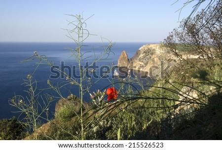 shore of sea in morning in Crimea   - stock photo