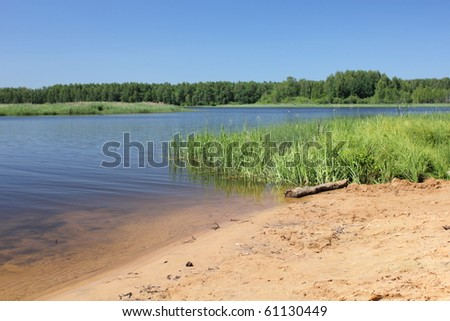 shore of the river in the summer - stock photo
