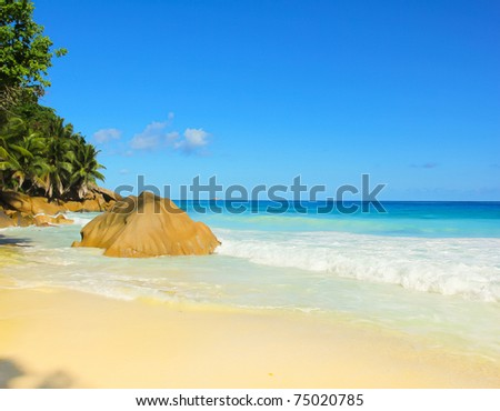 Shore Tranquility Dream - stock photo