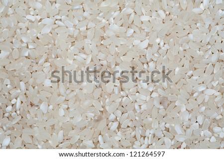 short rice background - stock photo