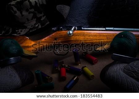 Shotgun and decoys - stock photo
