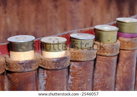 Shotgun shells in a belt - Macro - stock photo