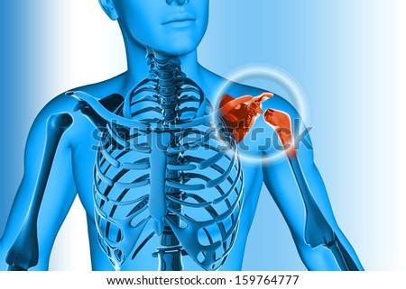 Shoulder pain - hurt trauma - stock photo