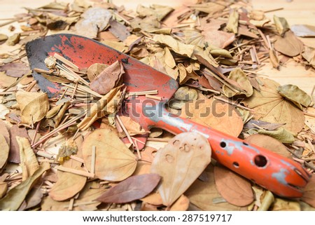 shovel on dry leaves background. - stock photo