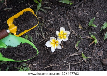 Shovel spoons digging soil and Plumeria flower - stock photo