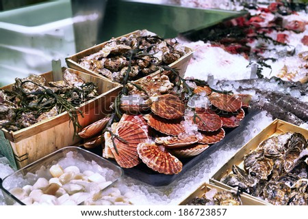 showcase of seafood in the sea market - stock photo