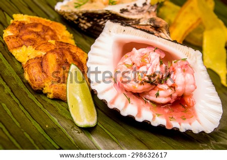 shrimp cebiche served on a sea shell - stock photo