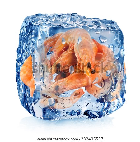 Shrimps in ice cube isolated on white - stock photo