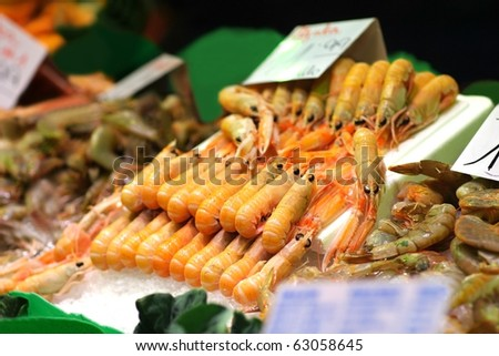 Shrimps in rows - stock photo
