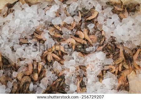 Shrimps on Greek island Kalymnos market - stock photo