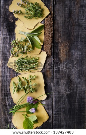 Shrubs And Herbs Typical Of The Mediterranean Area  - stock photo