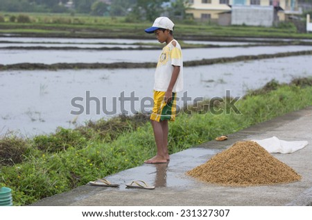 Sibalom, Philippines - October 16, 2014: Young boys putting rice in a heap for drying - stock photo