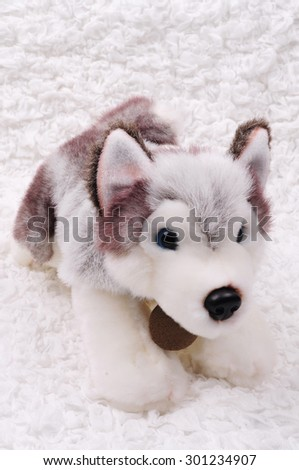 Siberian Husky puppy stuffed toy - stock photo