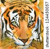 Siberian Tiger. Watercolor. - stock photo