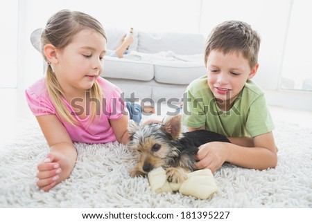 Siblings lying on rug with their yorkshire terrier puppy at home in the living room - stock photo
