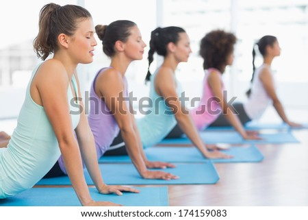 Side view of a fit class doing the cobra pose in a bright fitness studio - stock photo