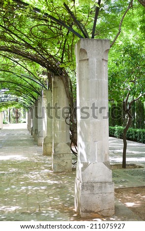 Side view of a lush green park with old stone columns forming a shaded path with vine climbing plants growing during a sunny summer day, outdoors. Still life view of a decorative park path. - stock photo