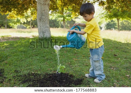 Side view of a young boy watering a young plant in the park - stock photo