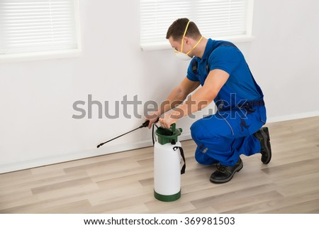 Side view of male worker spraying pesticide on wall at home - stock photo